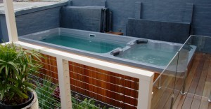 Duel Zone - Plunge Pool and Spa 2
