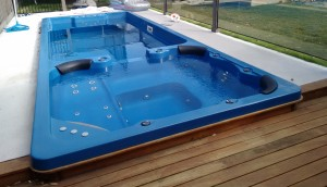 Duel Zone - Plunge Pool and Spa 5