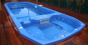 Duel Zone - Plunge Pool and Spa 6
