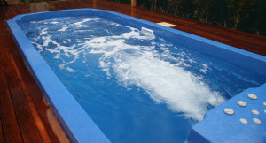 Duel Zone - Plunge Pool and Spa 7